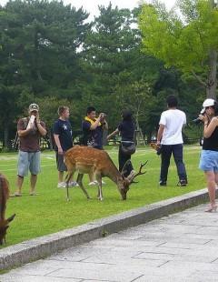 Touristes à Londres