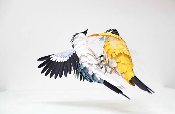diana beltran herrera 3 Les oiseaux en papier
