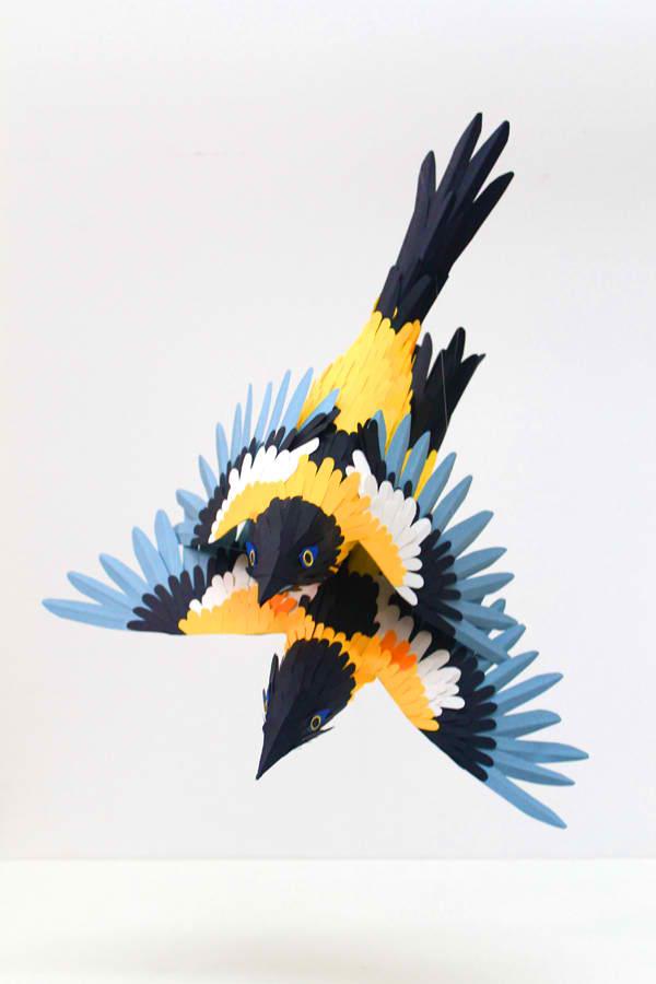 diana beltran herrera 5 Les oiseaux en papier