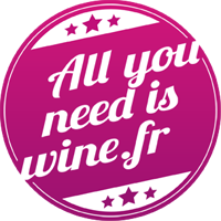 logo ayniw  All you need is wine, nouvel acteur du e commerce du vin