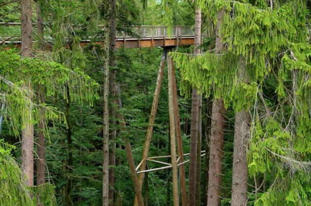 The-Worlds-Longest-Tree-Top-Walk7-640x423