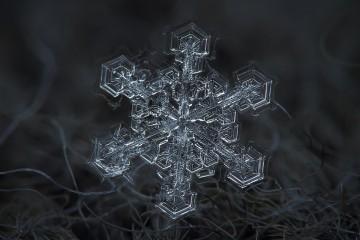 Macro-Snowflakes-Alexey-Kljatov-16