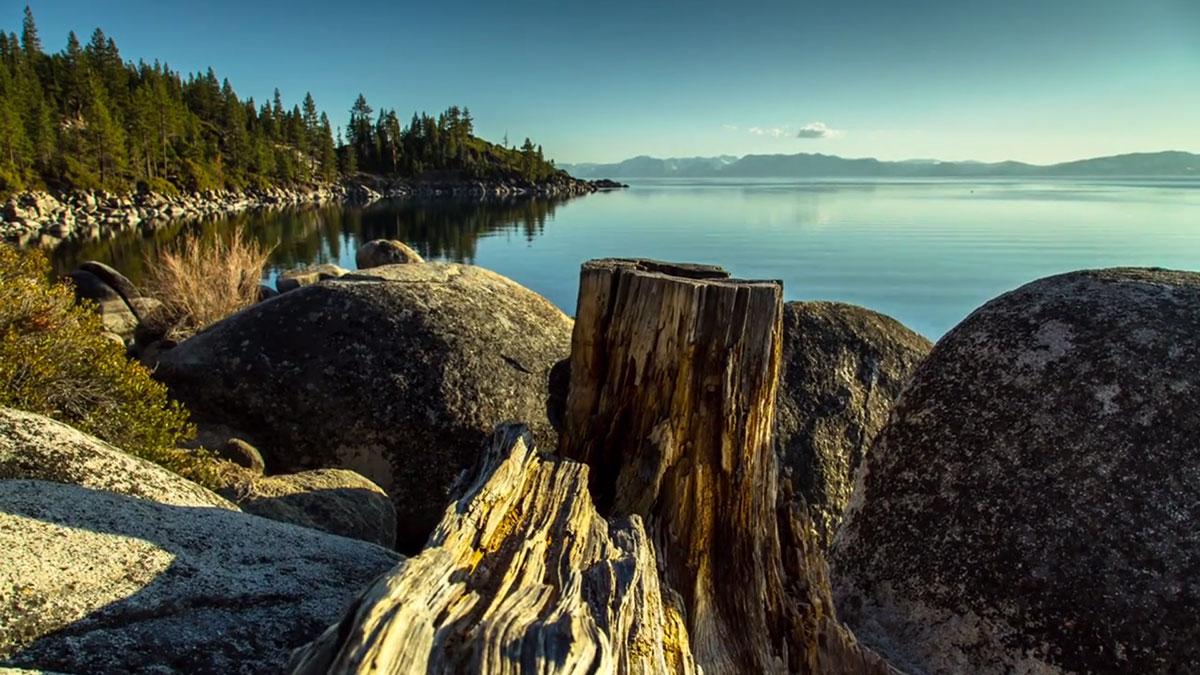 vegetation-autour-lake-tahoe