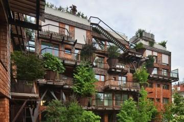 Luciano-Pia-arbre-immeuble