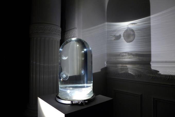 The darwin sect un aquarium d di aux m duses spanky few culture - Aquarium meduse design ...