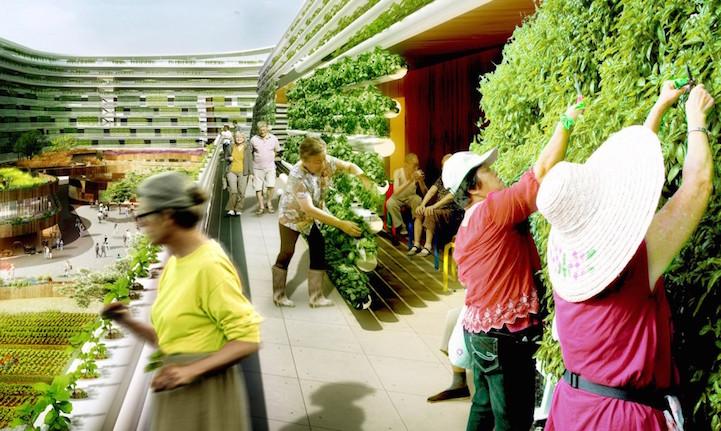 Spark-homefarm-senior-innovation-habitat-logement-sinagpour-spanky-few