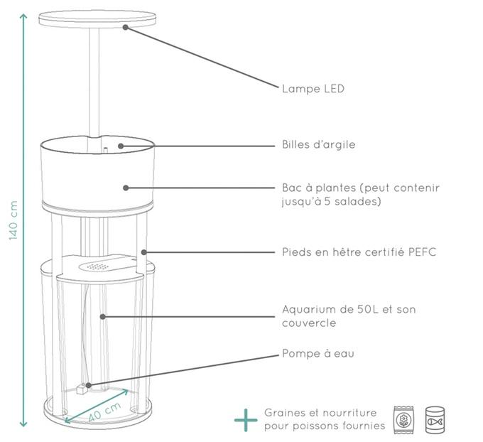 ÖdenaGarden-spankyfew-aquaponie