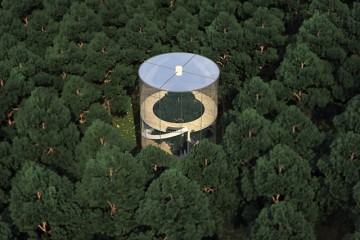 Tree-In-The-House-A-Masow-Design-Studio-Cool-Treehouse-1