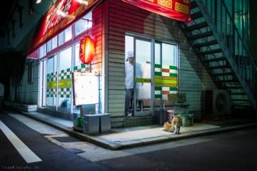 Neko-Land-Cats-in-Japan1-640x426