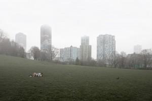 julien-mauve-photographie-banlieue-spanky-few-3