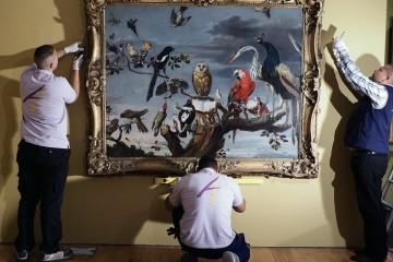 musee-beaux-arts-rouen-spanky-few-1